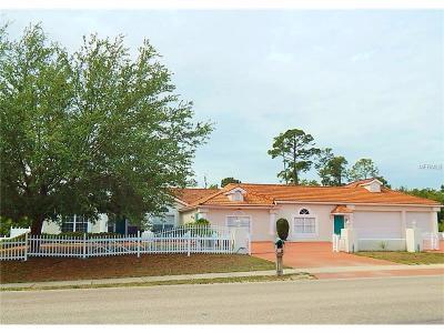 Port Charlotte Single Family Home For Sale: 23445 Peachland Boulevard