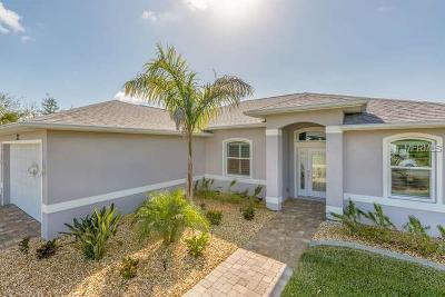 Port Charlotte Single Family Home For Sale: 46 E McDill Drive E