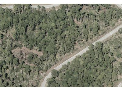 Residential Lots & Land For Sale: 453 Burma Court