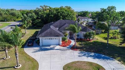 Port Charlotte Single Family Home For Sale: 22193 Hallstead Avenue