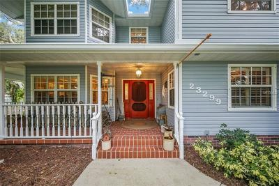Port Charlotte Single Family Home For Sale: 23299 Garrison Avenue