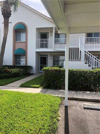 Hillsborough County, Pinellas County, Pasco County, Hernando County, Manatee County, Sarasota County Rental For Rent: 4318 Madeira Court #3339
