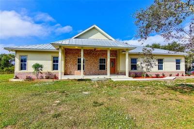 Punta Gorda Single Family Home For Sale: 29380 Pine Villa Circle