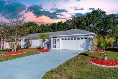 Single Family Home For Sale: 381 Strasburg Drive