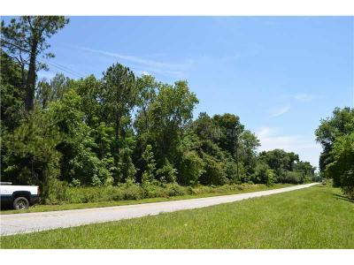 Dade City Residential Lots & Land For Sale: 0 Blanton Rd