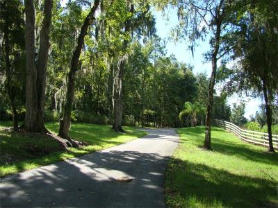 Dade City Residential Lots & Land For Sale: Lot #3 Meadow Bluff View