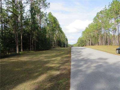 Dade City, San Antonio, Wesley Chapel, Brooksville Residential Lots & Land For Sale: 17321 Country Squire Lane
