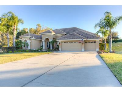 Dade City, Apollo Beach, St Petersburg, Wesley Chapel, San Antonio, Clearwater, Lithia, Seffner, Land O Lakes, Ruskin, Temple Terrace Rental For Rent: 13740 Thoroughbred Drive