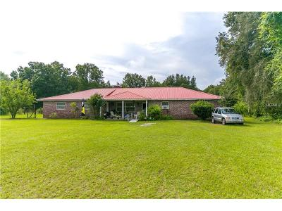 Pasco County Single Family Home For Sale: 41200 Merrick Road