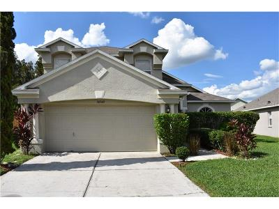 Wesley Chapel Single Family Home For Sale: 30909 Wooley Court