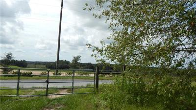 Dade City Residential Lots & Land For Sale: 0 Sumner Lake Road