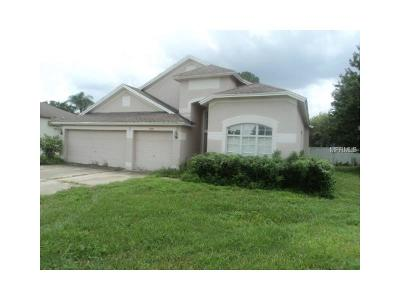 Hernando County, Hillsborough County, Pasco County, Pinellas County Single Family Home For Sale: 5925 Button Flower Court