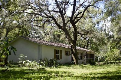 Brooksville Single Family Home For Auction: 16122 Hodza Street