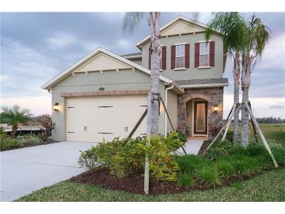 Wesley Chapel Single Family Home For Sale: 29138 Perilli Place