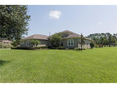 Hernando County, Hillsborough County, Pasco County, Pinellas County Single Family Home For Sale: 9852 Preakness Stakes Way