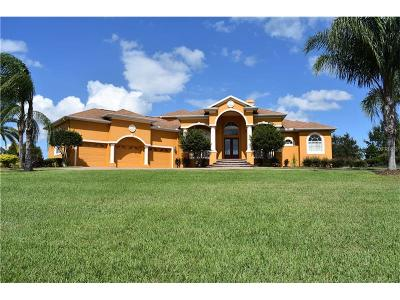 Dade City Single Family Home For Sale: 12245 Tradition Drive