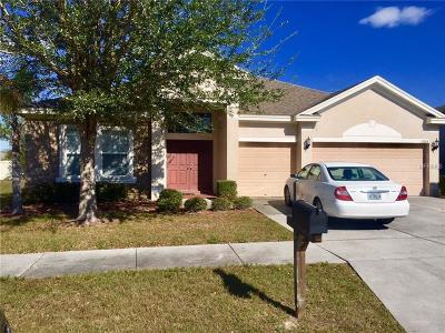 Hernando County, Hillsborough County, Pasco County, Pinellas County Single Family Home For Sale: 11804 Stonewood Gate Drive