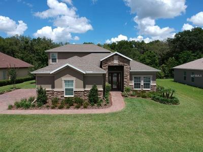 Dade City Single Family Home For Sale: 13620 Carryback Drive