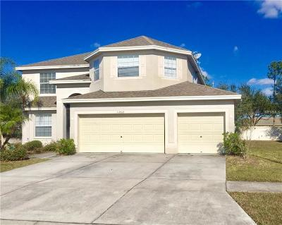 Hernando County, Hillsborough County, Pasco County, Pinellas County Single Family Home For Sale: 11802 Stonewood Gate Drive