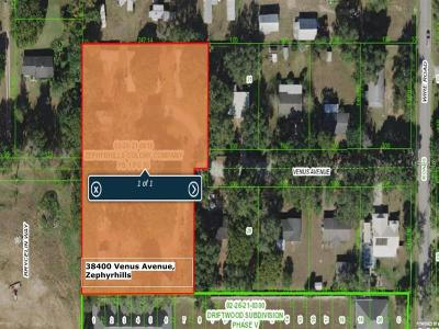 Zephyrhills Multi Family Home For Sale