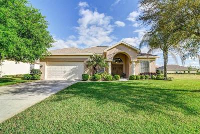 Dade City Single Family Home For Sale: 34629 Heavenly Lane
