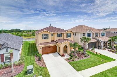 Wesley Chapel Single Family Home For Sale: 4568 Esperanza Court