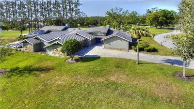 Wesley Chapel Single Family Home For Sale: 29820 Baywood Lane