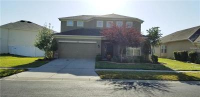 Wesley Chapel Single Family Home For Sale: 4328 Hawksley Place
