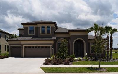 Wesley Chapel Single Family Home For Sale: 32426 Goddard Drive