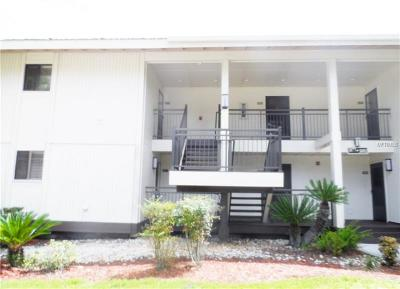 Wesley Chapel Condo For Sale