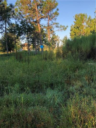 Wesley Chapel Residential Lots & Land For Sale: Drifting Sand