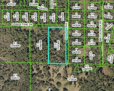 Webster FL Residential Lots & Land For Sale: $54,900