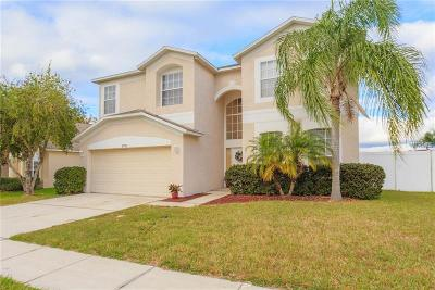 Wesley Chapel Single Family Home For Sale: 27115 Hollybrook Trail