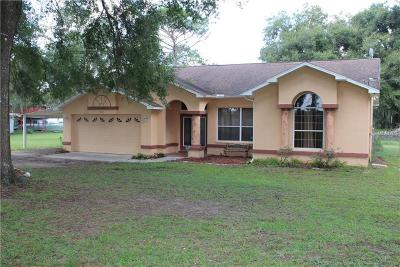 Brooksville Single Family Home For Sale: 6863 Remington Road
