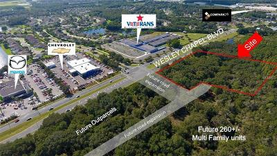 Commercial For Sale: 26857 Wesley Chapel Boulevard