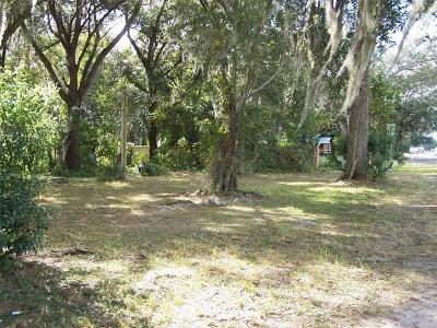 Zephyrhills Residential Lots & Land For Sale: 37746 Daughtery Road