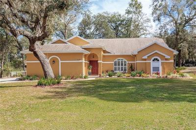 Dade City Single Family Home For Sale: 12793 Timber Run