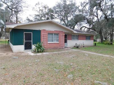 Dade City Single Family Home For Sale: 19430 Pullman Lane