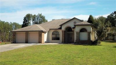 Dade City, San Antonio, Wesley Chapel, Brooksville Single Family Home For Sale: 17646 Palamino Lake Drive