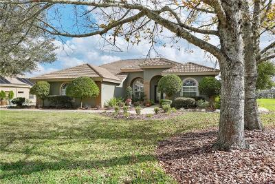 Dade City Single Family Home For Sale: 13938 Thoroughbred Drive