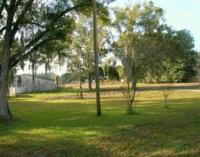 Webster Residential Lots & Land For Sale: 2547 Sr Hwy. 50
