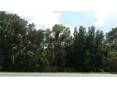 Yalaha Residential Lots & Land For Sale: 0 County Road 48