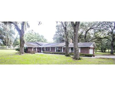 Clermont Single Family Home For Sale: 17900 County Road 455