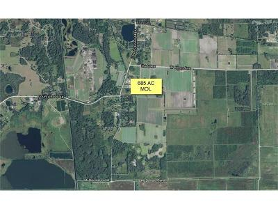 mount dora Residential Lots & Land For Sale: 448-A