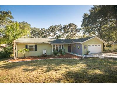 Mount Dora Single Family Home For Sale: 1912 Hilltop Drive