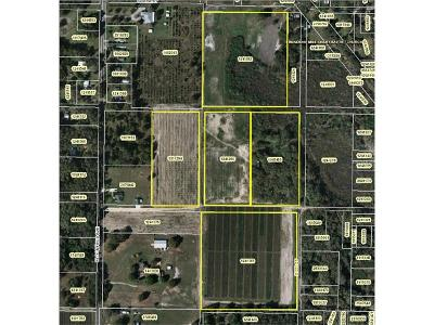Yalaha Residential Lots & Land For Sale: 8635 High Street