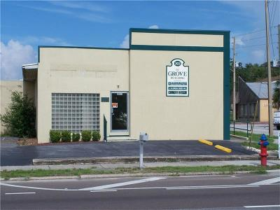 Commercial For Sale: 303 N Grove Street