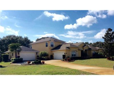 Clermont Single Family Home For Sale: 11209 Arrowtree Boulevard