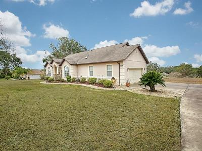 Lady Lake Single Family Home For Sale: 39025 Grays Airport Road