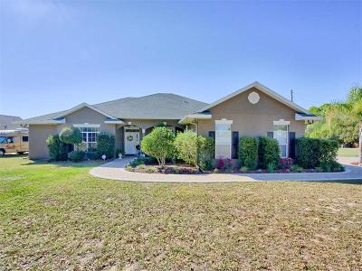 Mount Dora Single Family Home For Sale: 17800 E Lake Jem Road